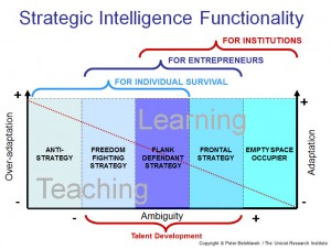 Functionality of the strategic intelligence